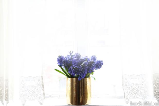 8 sai lam thuong gap khien hoa cam nhanh ua tan - 3