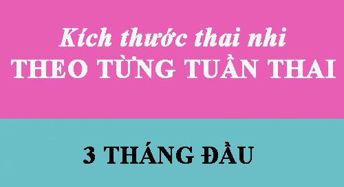 can nang, chieu dai chuan cua thai nhi theo tung tuan thai - 1