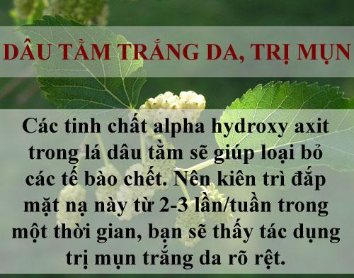 tri sach mun chi mat vai nghin dong bang la cay - 6