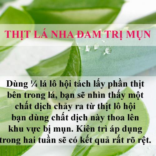 tri sach mun chi mat vai nghin dong bang la cay - 1