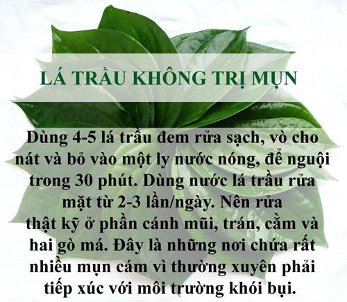 tri sach mun chi mat vai nghin dong bang la cay - 5