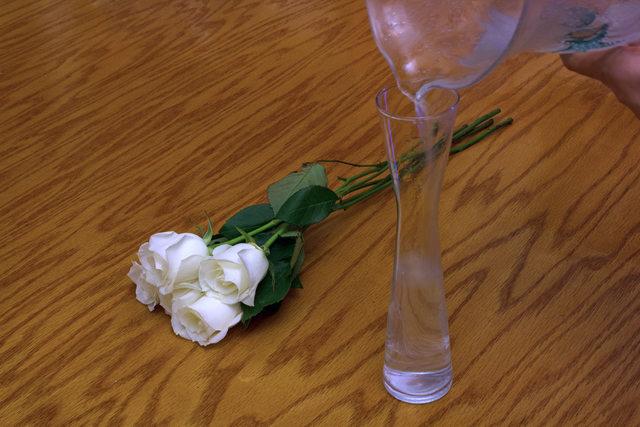 8 tieng 'trong' ra hoa hong xanh dep mat - 5