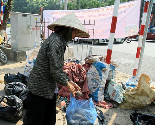 nguoi ha noi mua khoai lang ung ho nong dan vinh long - 5