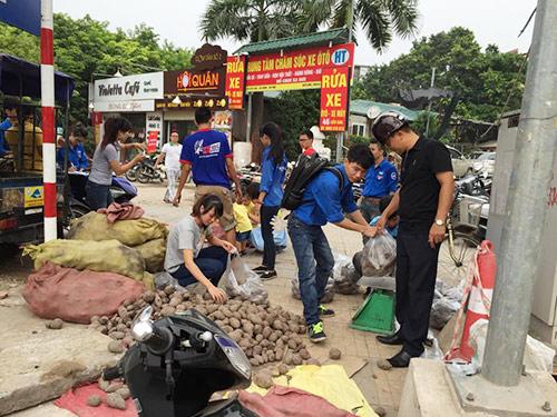 nguoi ha noi mua khoai lang ung ho nong dan vinh long - 7