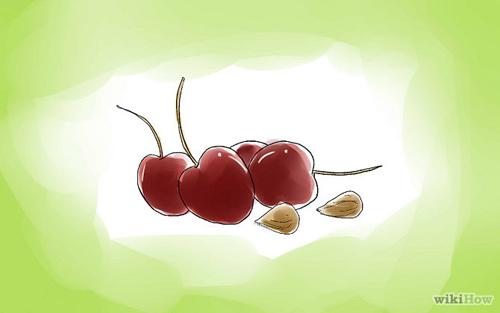 mach ban cach trong cherry sai triu qua tai nha - 3