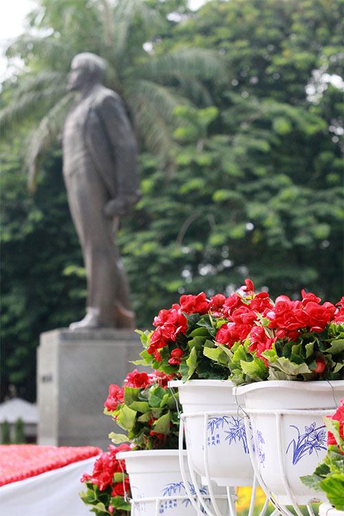 duong pho ha noi ruc ro co hoa dip quoc khanh 2/9 - 6