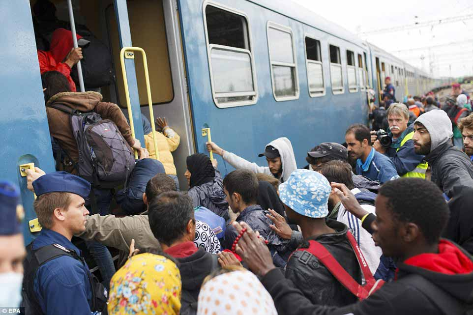 cuoc song moi cua mot gia dinh ti nan syria tren dat my - 4