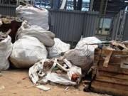 Tin tức - Bùn rác chất đống, cá chết trong Formosa