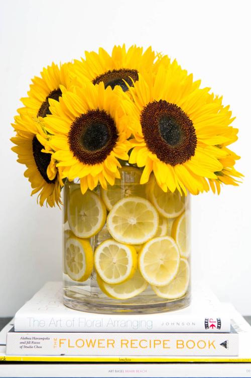 15 meo tuyet dinh giu hoa tuoi lau ma lai dep - 11