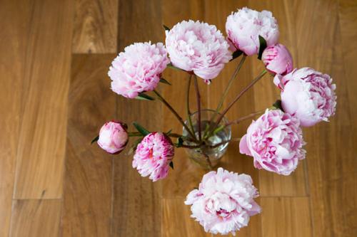 15 meo tuyet dinh giu hoa tuoi lau ma lai dep - 3