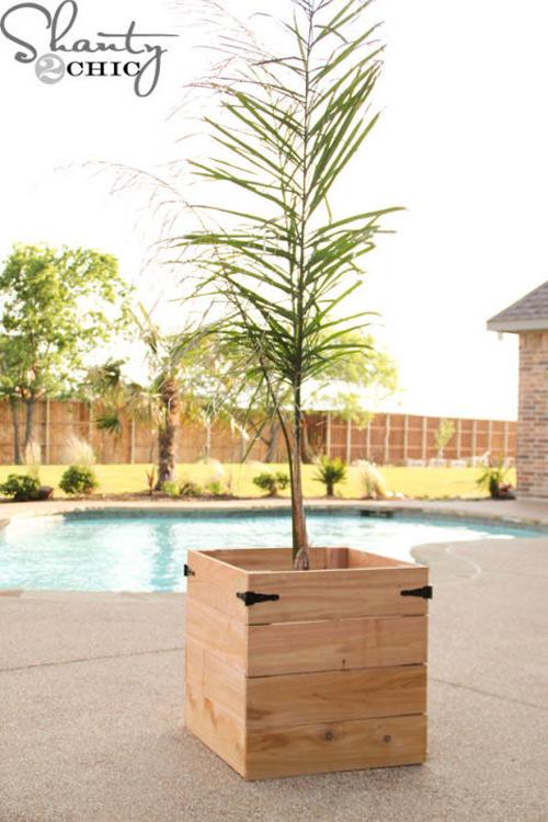 16 loại chậu cây phù hợp với mọi kiểu sân vườn-17