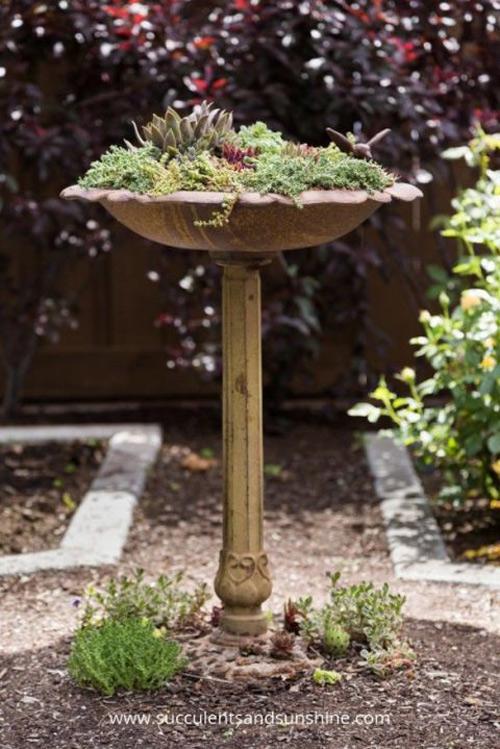 16 loại chậu cây phù hợp với mọi kiểu sân vườn-3