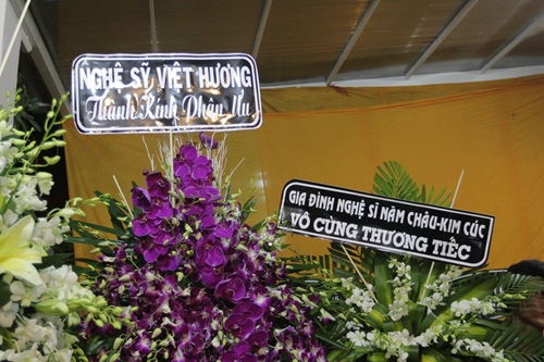 "dong nghiep den vieng ""huyen thoai cai luong"" thanh tong trong dem muon - 1"