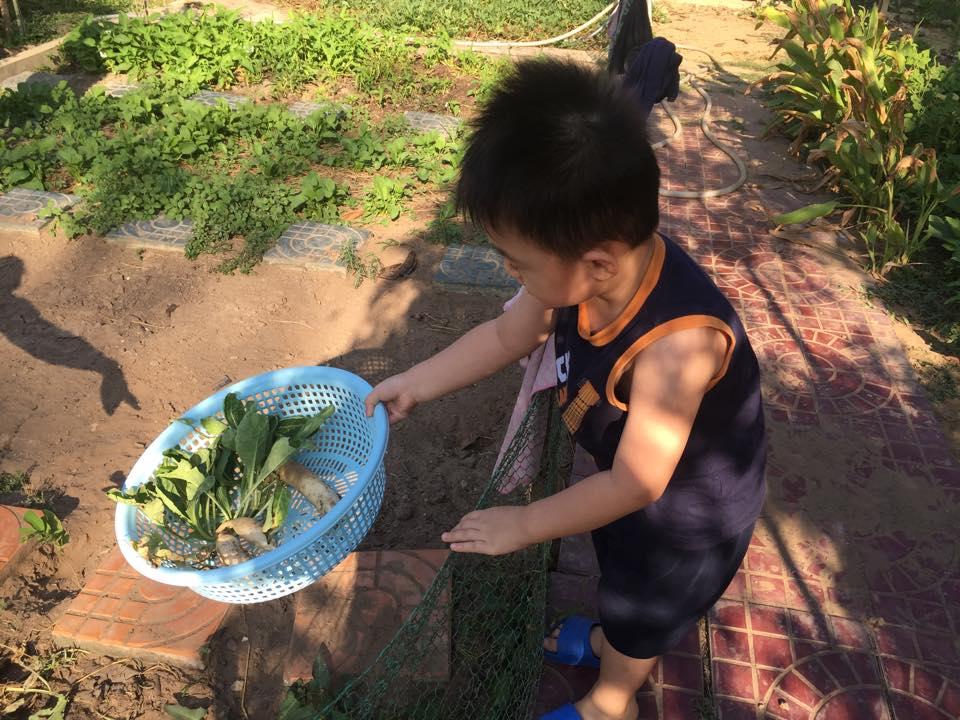 con trai le phuong trong rau, bat sau, con hong nhung loi bun cay lua - 2