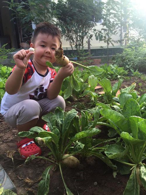 con trai le phuong trong rau, bat sau, con hong nhung loi bun cay lua - 3