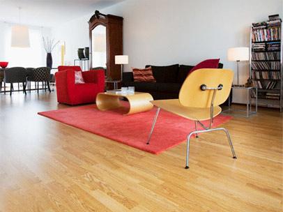 Vệ sinh sàn gỗ một cách hoàn hảo - 2