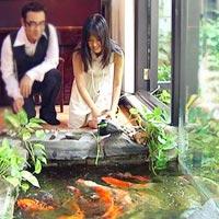 Diva Hồng Nhung và ngôi nhà ngập tràn thiên nhiên
