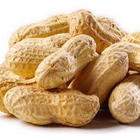 Lạc luộc là một loại thảo dược