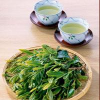 Mẹo pha trà và cách bảo quản