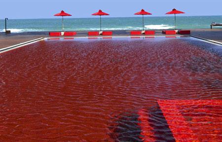 """Những bể bơi """"sành điệu"""" nhất thế giới - 2"""