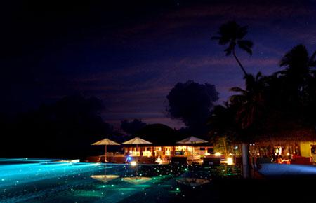 """Những bể bơi """"sành điệu"""" nhất thế giới - 4"""