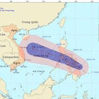 Trưa nay, bão số 8 mạnh cấp 10 vào biển Đông