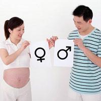 Giới tính của thai nhi hình thành như thế nào?