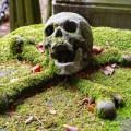 Những nghĩa trang ám ảnh nhất thế giới