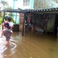 Tin tức - Sau bão số 10: 38 người thương vong