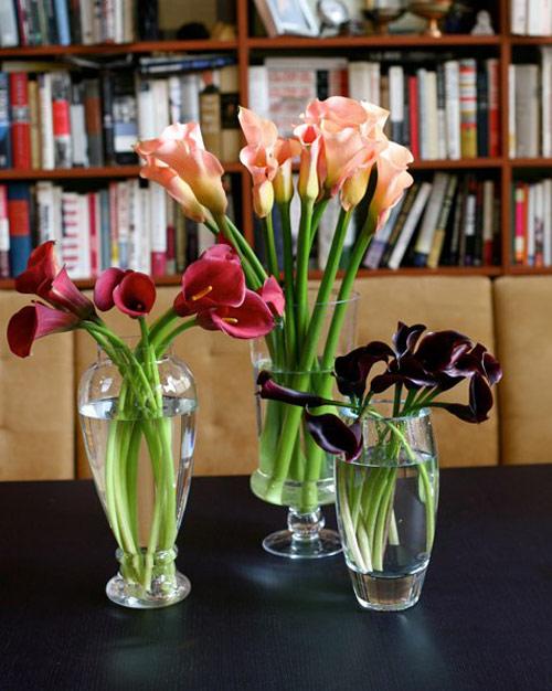 hoa dep 20-10: 3 mau hoa rum de cam - 2