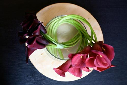 hoa dep 20-10: 3 mau hoa rum de cam - 16
