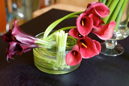 hoa dep 20-10: 3 mau hoa rum de cam - 17