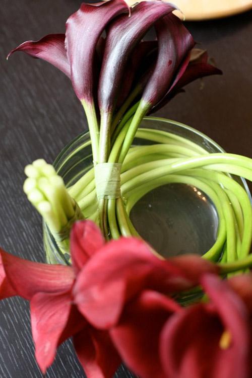 hoa dep 20-10: 3 mau hoa rum de cam - 19