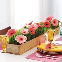 hoa dep 20-10: ket hoa xinh cho nang 20 - 15