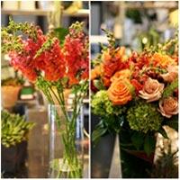 Hoa đẹp 20-10: Cắm hoa Mõm chó đẹp khó chê