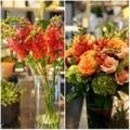 Nhà đẹp - Hoa đẹp 20-10: Cắm hoa Mõm chó đẹp khó chê