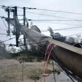 Tin tức - 10 nhà máy điện ngừng hoạt động vì bão Nari