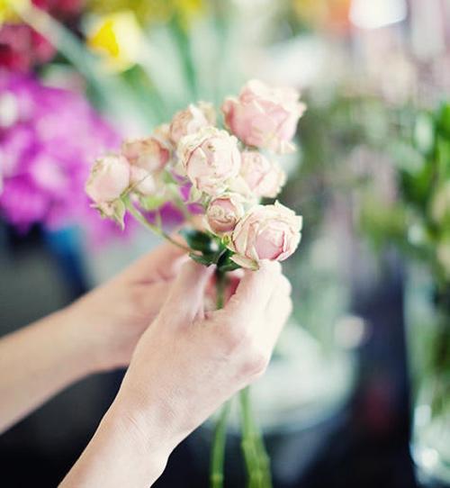 hoa dep 20-10: cam 'binh tra hoa' thom phuc - 2