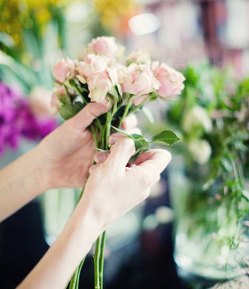hoa dep 20-10: cam 'binh tra hoa' thom phuc - 3