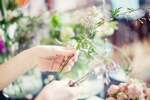 hoa dep 20-10: cam 'binh tra hoa' thom phuc - 6
