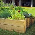 Nhà đẹp - Nhờ chồng yêu 'đóng giường' trồng rau độc đáo
