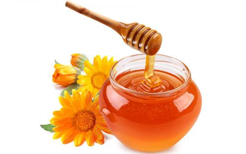 Bầu bí không thể thiếu mật ong - 1