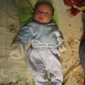 Tin tức - Hà Nội: Bé trai nặng 3,2kg bị bỏ rơi trên bờ đê