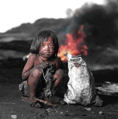 """Những bức ảnh """"hot"""" nhất trong tuần (1/11-8/11)-4"""