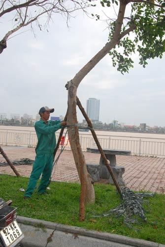 Dân miền Trung bắt đầu chạy siêu bão HaiYan - 2
