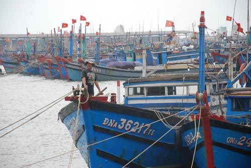 Dân miền Trung bắt đầu chạy siêu bão HaiYan - 4