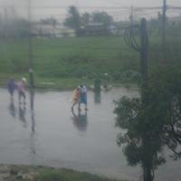 Gió bão rất lớn ở Hải Phòng, Quảng Ninh