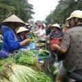 """Mua sắm - Giá cả - """"Cháy chợ"""" thực phẩm trước siêu bão Haiyan"""