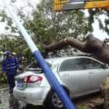 Trung Quốc báo động đỏ vì bão Haiyan