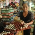 Mua sắm - Giá cả - Trứng gà giảm giá sâu, người nuôi lo ứ hàng